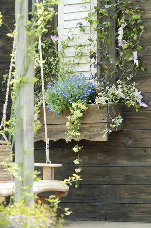an awning: Awning windows and ornamental plants