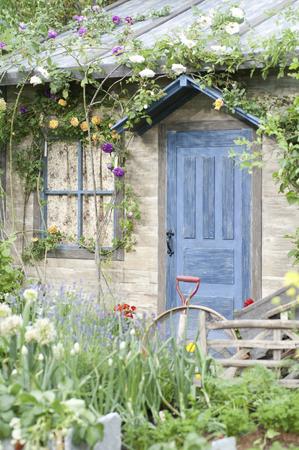 blue door: Of blue door house Stock Photo