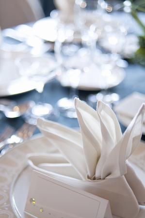 servilleta: Napkin on the table