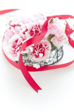 carnations: Carnations and Ribbon Stock Photo