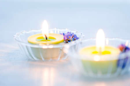fluctuations: Candles and forget-me-not