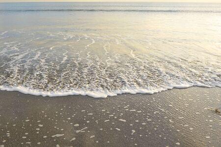 waters: Waters edge