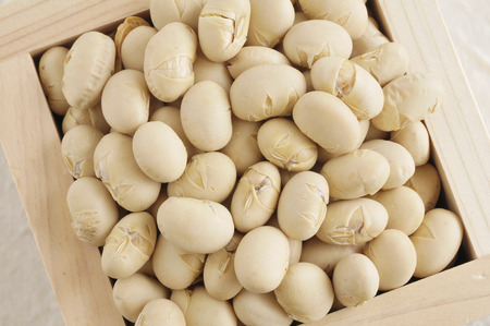 bean family: Soy roasted it with the mass Stock Photo