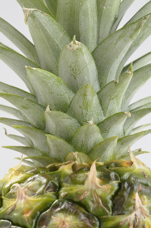 foodstuff: Pineapple