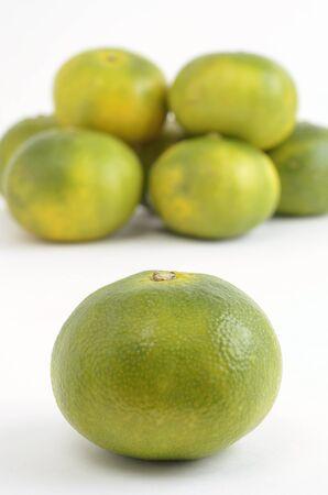 naranjas: Naranjas temprana maduraci�n