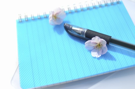 writing  instrument: Notebook and ballpoint pen