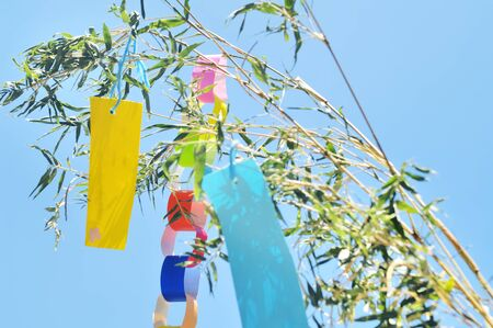 seasonal worker: Tanabata