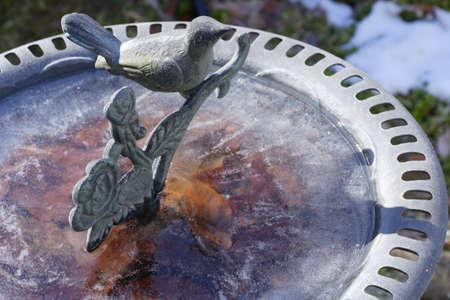 葉に落ちた冷凍水の鳥バス 写真素材