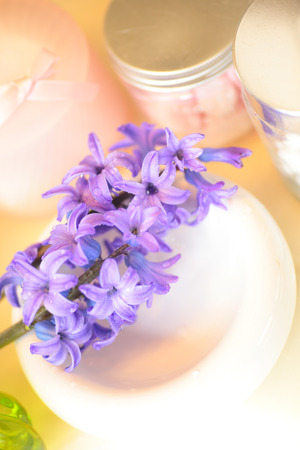 holder: Carrying a SOAP holder hyacinth flowers