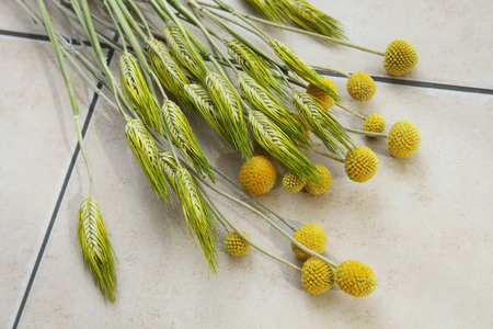 dried flower arrangement: Craspedia and wheat dried flowers