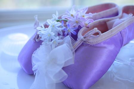 白い花シラーとバレエ シューズ 写真素材