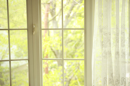 The view from the Bay window lace curtain