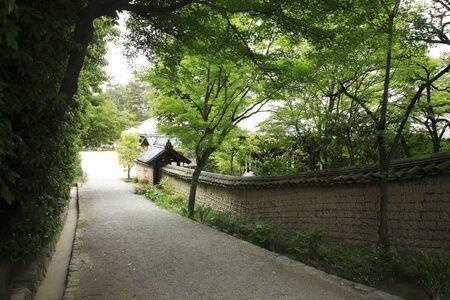 an approach: Toshodaiji approach