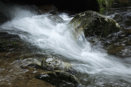 redeye: Mountain stream of red-eye
