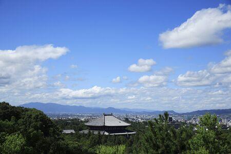 todaiji: Todaiji distant view