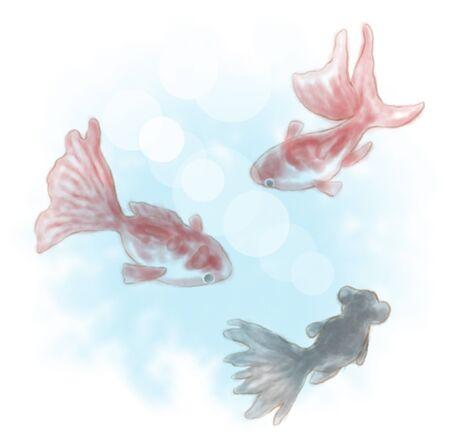 frigid: Goldfish
