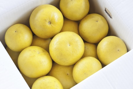 entered: Pomelo that entered the box of cardboard Stock Photo