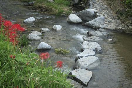 stepping stone: Asukagawa stepping stone