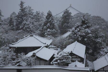 todaiji: Snow Todaiji Stock Photo