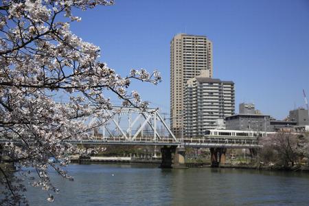 bucle: Sakura and the JR Osaka Loop Line