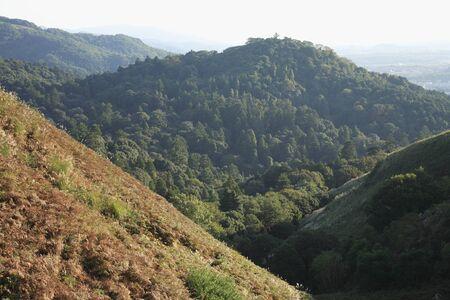 mt: Mitake Mt.