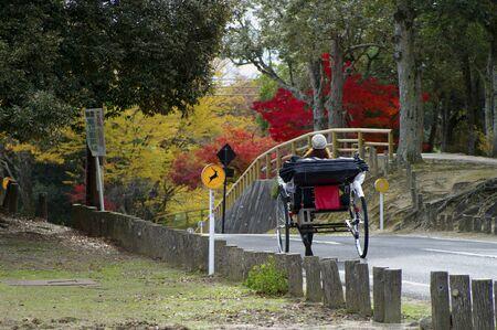 nara park: Rickshaw of Nara Park