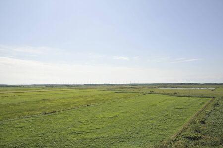 wetlands: Sarobetsu wetlands