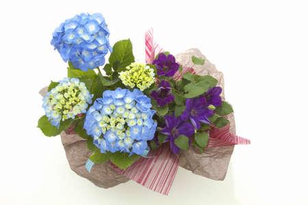 flower basket: Flower basket of hydrangeas and clematis
