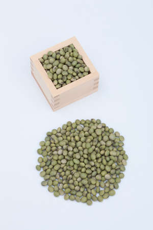 soaked: Soaked beans blue soybean