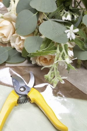 ikebana: Ikebana and scissors