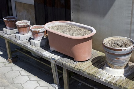 Planters and flowerpots for plants without plant