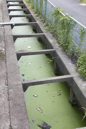 汚れた水の灌漑用水路