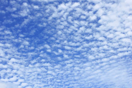 levitate: Autumn sky and clouds of scales