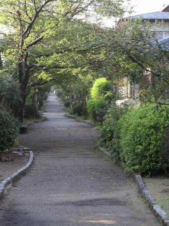 Promenade of housing estates