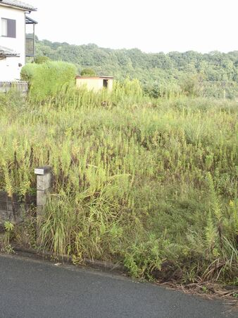 Residential vacant land