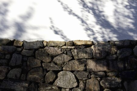 earthen wall: Shadow of trees reflected in the white earthen wall