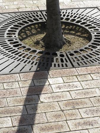 intake: Water intake fittings of street trees