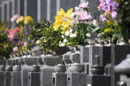 Begraafplaats met bloemen Stockfoto