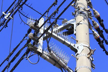 utility pole: Insulator of a utility pole