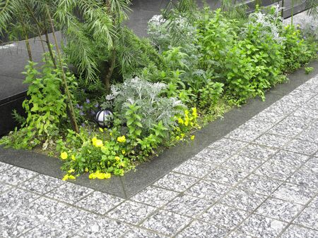 flowerbed: Flowerbed of building public open space Stock Photo