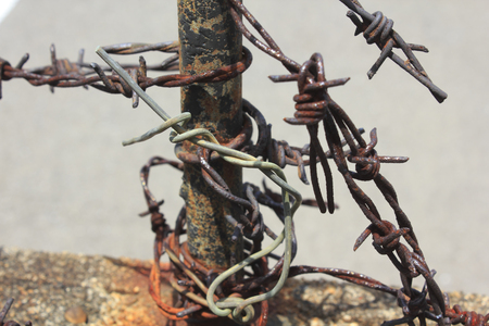barbs: rusty barbed wire