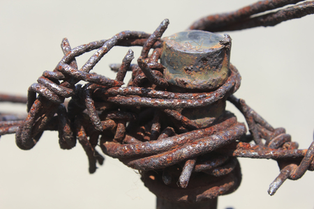 barbed wire: rusty barbed wire