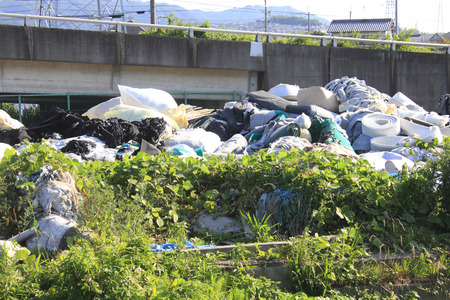 dumping: Illegal dumping of trash