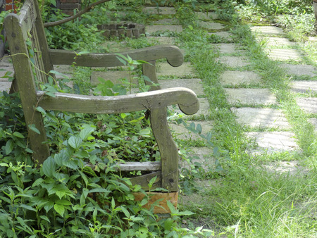 wood bench: Junk Garden and wood bench