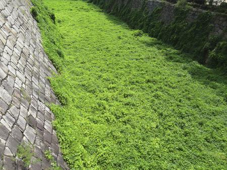 moat wall: Empty Osaka Castle moat Stock Photo