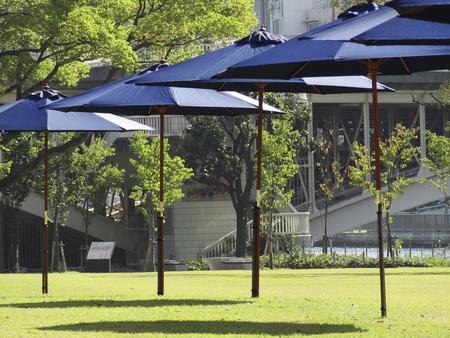 sun umbrellas: Park sun umbrellas