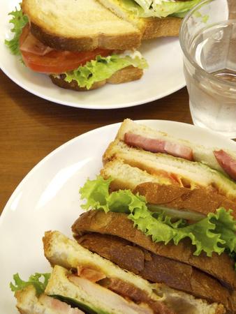サンドイッチ 写真素材