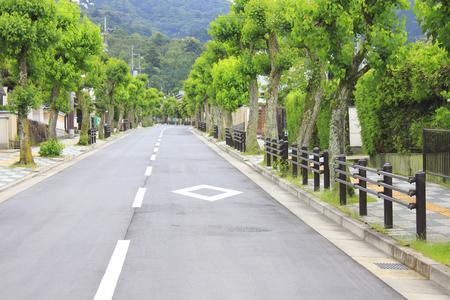 residential: Luxury residential street trees