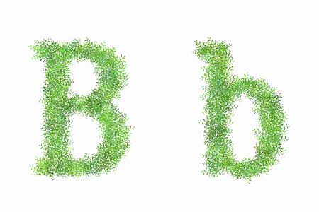 early summer: English letters B of arabesque