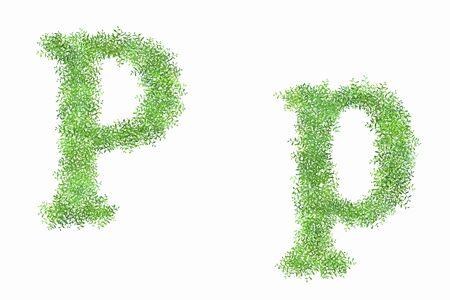 roman alphabet: English letters P of arabesque